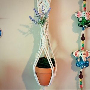 Hanging Macrame succulent plant holder 🌱